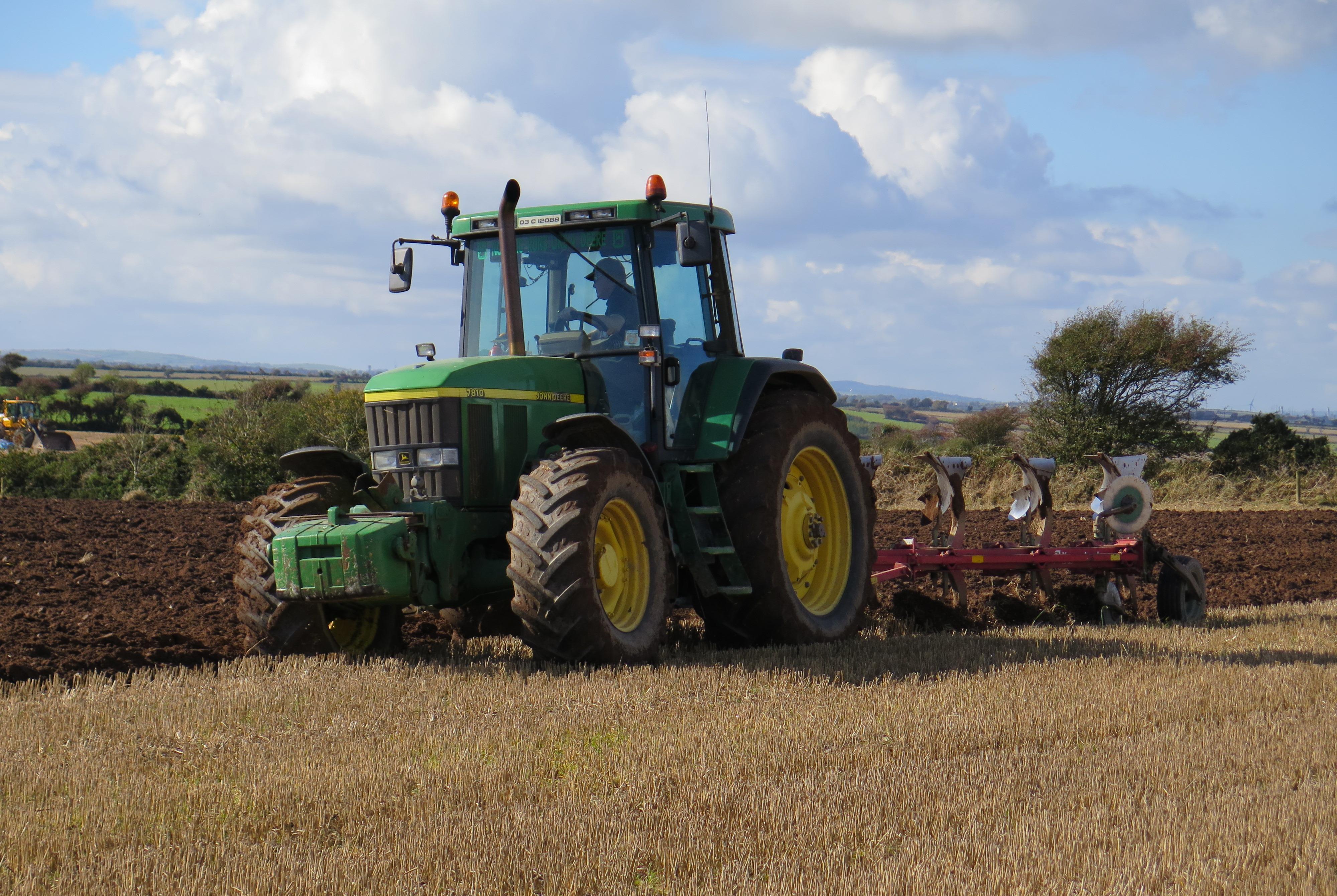 Spring Wheat / Barley