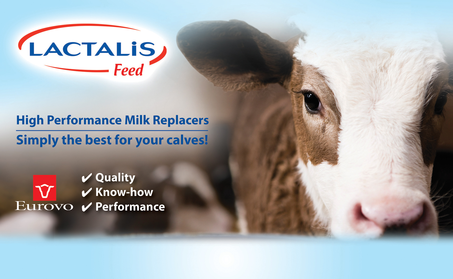Milk Replacer