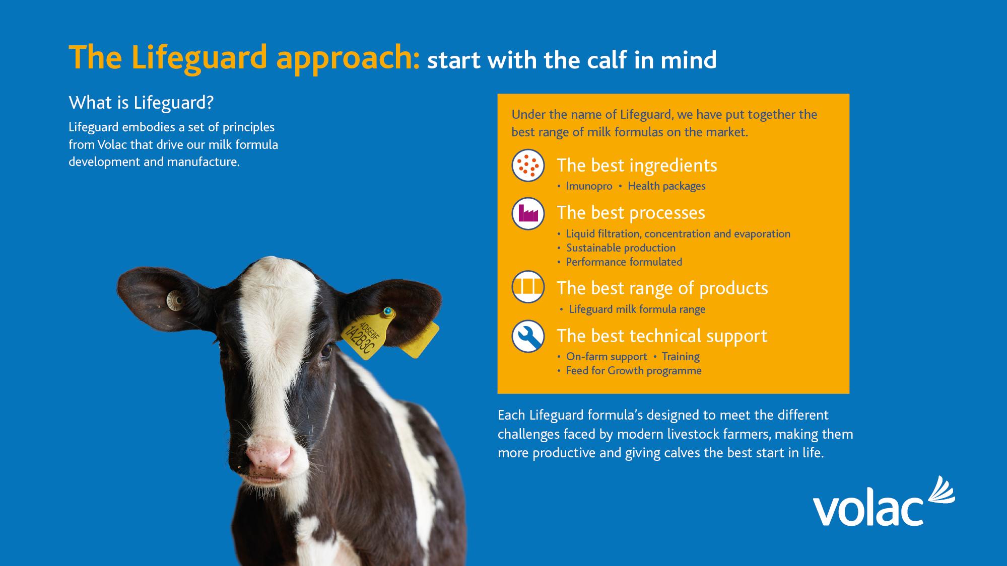 calf milk replacer mixing instructions